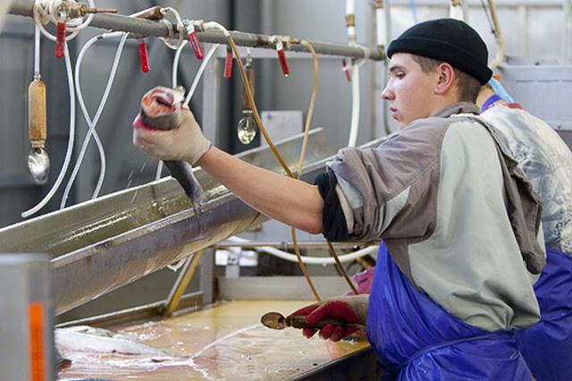Термобелье оптом работа в артёме рыбообрабочиком термобелье Женская